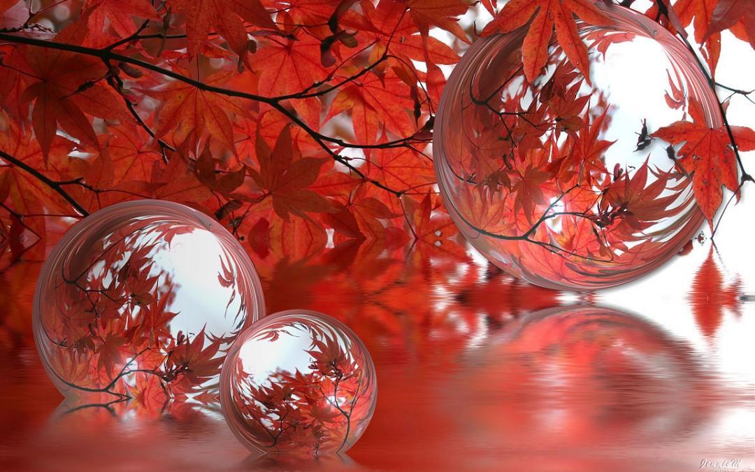 Tentez les bulles de lâcher-prise…